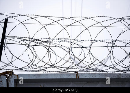 Barbed wire on concrete fence - Stock Photo