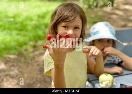 Kids eating raspberries, Apex Park, Riverway Drive, Condon QLD, Australia - Stock Photo