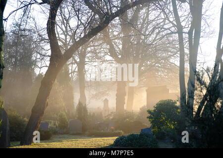 graveyard Berlin - Stock Photo