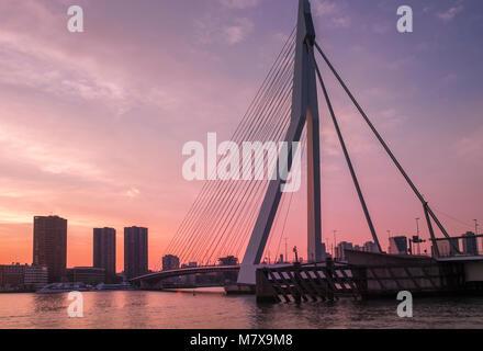 Erasmusbrug (Erasmus Bridge) at sunset, Rotterdam, The Netherlands. - Stock Photo