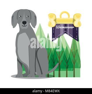 weimaraner dog icon over background, colorful design vector illustration - Stock Photo