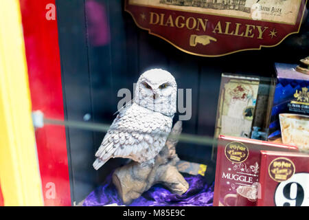 The Shambles, York 16th February 2018. J K Rowlings Harry Potter merchandise including Hedwig the owl and books - Stock Photo