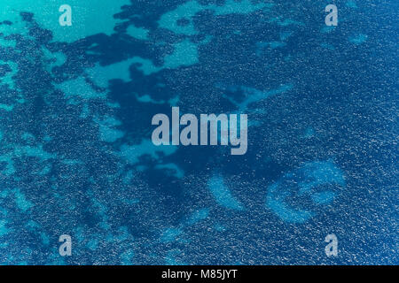 Aerial image of Mediterranean abstract blue water with big transparency near the coast of Isola di Pianosa - Stock Photo