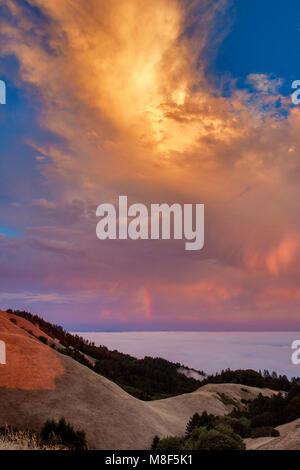 Sunset, Bolinas Ridge, Mount Tamalpais State Park, Golden Gate National Recreation Area, Marin County, California - Stock Photo