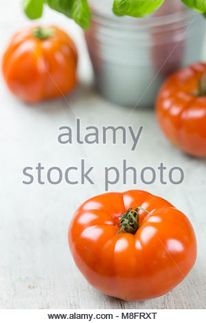Ripe red tomatoes with potted fresh basil in a metal pail on a rustic wooden kitchen table ready for cooking Mediterranean - Stock Photo