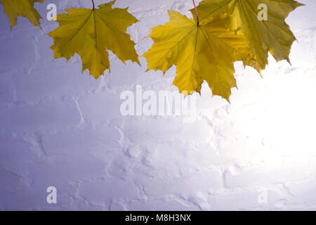 on a wooden background with autumn leaves, holiday gift, Thanksgiving Halloween. the view from the top. copy space - Stock Photo