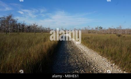 Monroe South ORV trail. - Stock Photo