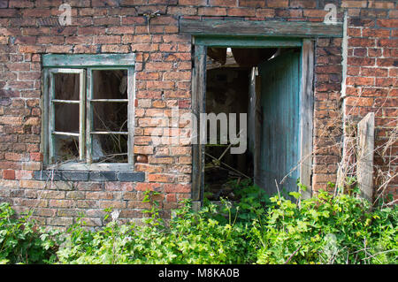 An old derelict, rotted green window and door frame against a red brick wall, with overgrown plants and brambles. - Stock Photo