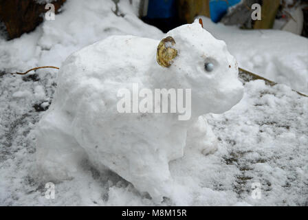 Portland, Dorset. 18th March 2018 - A rarely-seen 'Russian snow-pig', the original 'mini Beast from the East' Credit: - Stock Photo