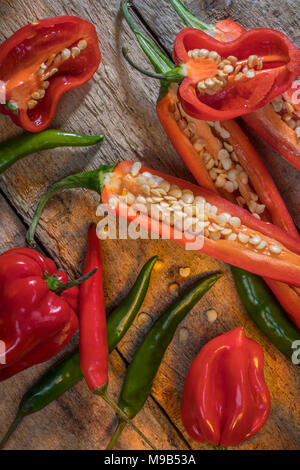 Hot and spicy chili peppers - jalapeno and habanero peppers. - Stock Photo