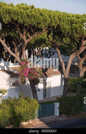 Small whitewashed house in Santa Eulália, Albufeira, Algarve, Portugal - Stock Photo