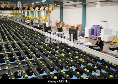 (180327) -- BEIJING, March 27, 2018 (Xinhua) -- Granny smith apples are processed on a packing line at a packing house of Auvil Fruit Company in Wenatchee, Washington State, the United States, on Nov. 3, 2017. Wenatchee, known in the United States as the 'Apple Capital,' might not be a familiar name for the Chinese people, but the red delicious, gala, granny smith and many more apple species the city produces have already been very popular among Chinese consumers. China has become one of Auvil's biggest overseas markets for its apples and cherries in recent years since the company learned abou - Stock Photo