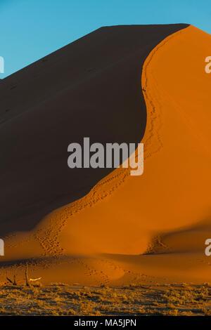 Sunset at the  giant sand Dune 45, Namib-Naukluft National Park, Namibia - Stock Photo