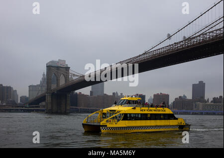 New York Water Taxi on the East River near the Brooklyn Bridge - Stock Photo