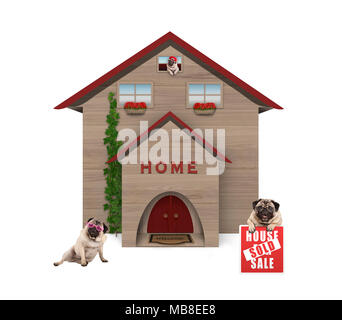 average middle class pug dog familiy, sitting down in garden with house sold sign at new home, isolated on white background - Stock Photo