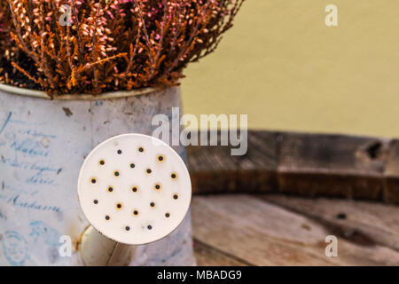 Close-up of a watering can full of dried lavender flowers - Stock Photo