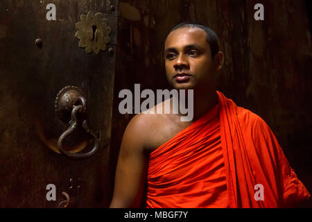 COLOMBO, SRI LANKA - DECEMBER 5, 2016: Unidentified Buddhist monk in Sri Lanka - Stock Photo
