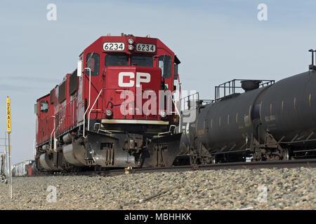 Medicine Hat, Alberta, Canada. 27th Aug, 2016. Canadian Pacific Railway locomotives and tanker rail cars, CP main-line near Medicine Hat, Alberta, Canada. Credit: Bayne Stanley/ZUMA Wire/Alamy Live News - Stock Photo