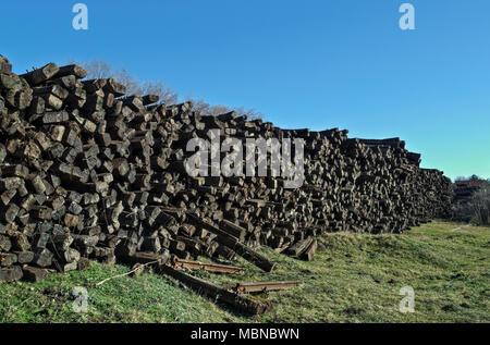 Field with giant pile of railway cross ties - Stock Photo