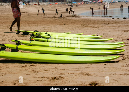 surf boards on a beach. lined up in the sand - Stock Photo