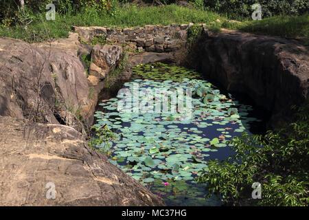 Avukana Ancient Rock Temple Kekirawa North Central Province Sri Lanka Lily Pond - Stock Photo