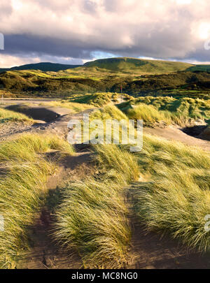A winter view across the sand dunes of Barmouth Beach looking towards Mawddach Estuary, North Wales. - Stock Photo