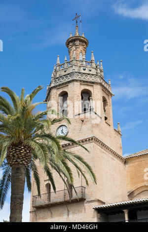 Palm tree and tower of the Iglesia de Santa Maria la Mayor, Ronda, Andalucia, Spain, Europe - Stock Photo