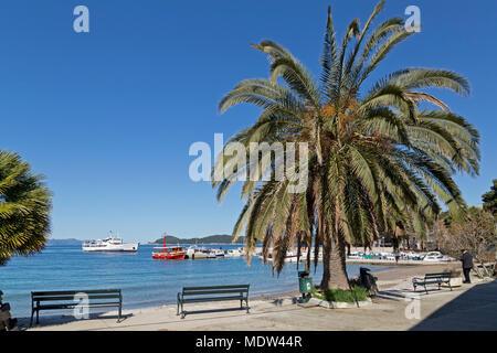 harbour, Lopud Island, Elephite Islands, Dalmatia, Croatia - Stock Photo