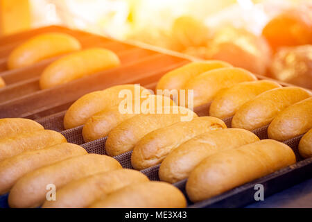 Close-up of fresh delicious buns with sausages lie in straight rows on a tray - Stock Photo