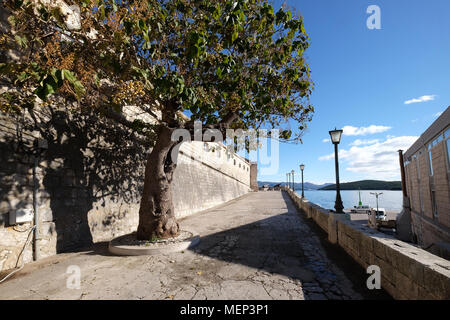 Seafront view at picturesque medieval Dalmatian town Korcula, Croatian culture and historic destination. - Stock Photo