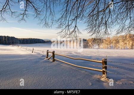 Morgenstimmung, Winterlandschaft bei Schwaigwall, Geretsried, Oberbayern, Bayern, Deutschland - Stock Photo