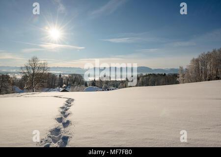 Winterlandschaft, Spuren im Schnee, Blick vom Schlossberg Eurasburg auf Loisachtal, Eurasburg, Oberbayern, Bayern, Deutschland - Stock Photo
