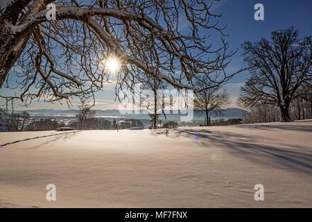 Winterlandschaft, Blick vom Schlossberg Eurasburg auf Loisachtal, Eurasburg, Oberbayern, Bayern, Deutschland - Stock Photo