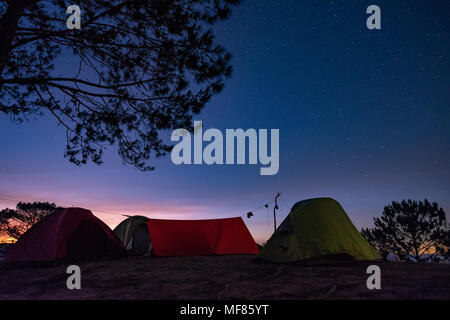Night camping. Royalty high quality free stock image of night camp in forest under amazing night sky full of stars. Tent camping under starry night - Stock Photo