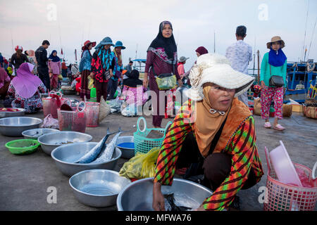The fish market in Kampot, Cambodia - Stock Photo