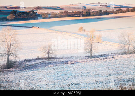 A frosty morning on the Marlborough Downs in Wiltshire looking towards Cherhill. - Stock Photo