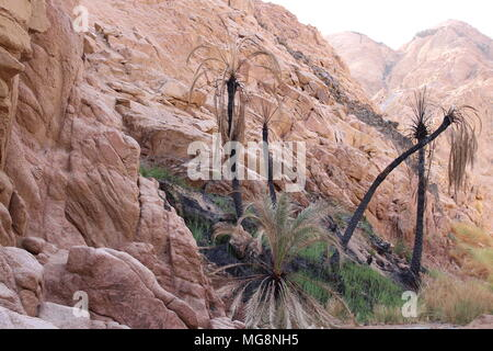 Beautiful canyon, mountains in Egypt. Sharm el-Sheikh - Stock Photo
