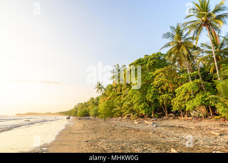 Sunset at paradise beach in Uvita, Costa Rica - beautiful beaches and tropical forest at pacific coast of Costa Rica - travel destination in central a - Stock Photo