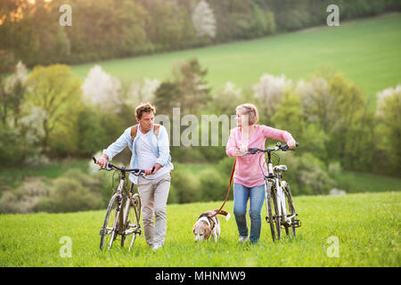 Beautiful senior couple with bicycles and dog outside in spring nature. - Stock Photo