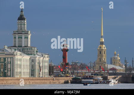 St Petersburg, Russia. 04th May, 2018. ST PETERSBURG, RUSSIA - MAY 4, 2018: RKL fish company [former V.I. Lenin Fishing Collective Farm] employees catching smelt in the Neva River. Pictured in the background are Kunstkamera museum, a rostral column, and the Peter and Paul Cathedral. Peter Kovalev/TASS Credit: ITAR-TASS News Agency/Alamy Live News - Stock Photo