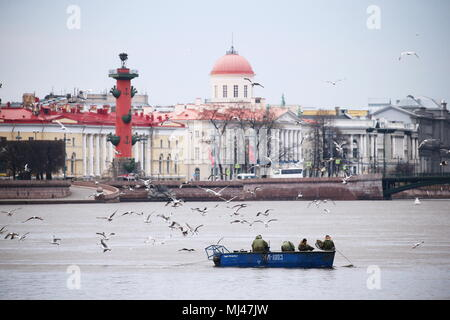 St Petersburg, Russia. 04th May, 2018. ST PETERSBURG, RUSSIA - MAY 4, 2018: RKL fish company [former V.I. Lenin Fishing Collective Farm] employees catching smelt in the Neva River. Pictured in the background is a Rostral Column on the Spit of Vasilyevsky Island. Peter Kovalev/TASS Credit: ITAR-TASS News Agency/Alamy Live News - Stock Photo