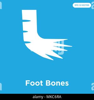 Foot Bones vector icon isolated on blue background, sign and symbol - Stock Photo