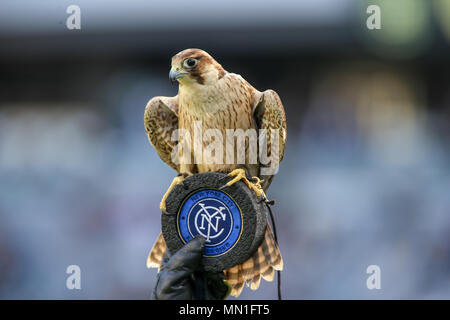Los Angeles, CA, USA. 13th May, 2018. MLS 2018: Los Angeles Football Club vs New York City Football Club at BANC OF CALIFORNIA Stadium in Los Angeles, Ca on May 13, 2018. Jevone Moore Credit: csm/Alamy Live News - Stock Photo
