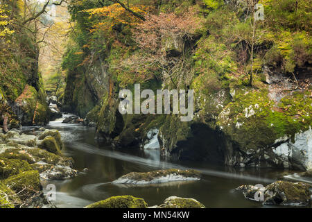The Fairy Glen, Conway Valley, Snowdonia, Wales, UK - Stock Photo