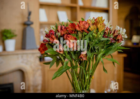 Beautiful bouquet of colorful flowers,Alstroemeria.Lily of the Incas, gorgeous red, orange white alstroemeria bouquet, fresh bright flowers with yellow centers in vase. Home decoration - Stock Photo
