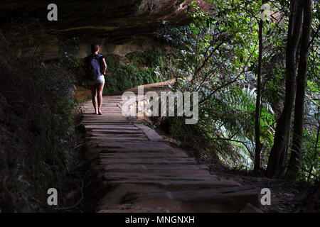 A beautiful girl walking on a forest trail is lit by morning light shining through the trees. - Stock Photo