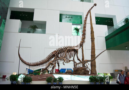 Three Sauropod dinosaurs (Diplodocus) of the Jurassic Period in a display at the China Science and Technology Museum in Beijing, China. - Stock Photo