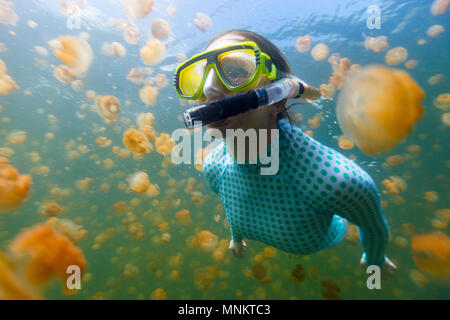 Underwater photo of tourist woman snorkeling with endemic golden jellyfish in lake at Palau. - Stock Photo