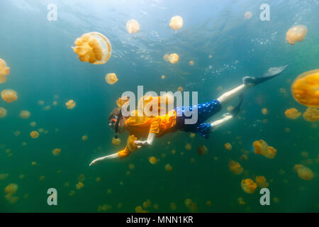 Underwater photo of child diving with endemic stingless jellyfish in lake at Palau. - Stock Photo
