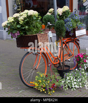 Amsterdam,netherlands-june 3, 2015: bicycle decorated with flowers in the streets of Amsterdam - Stock Photo